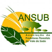 Pedro Silveira, Associação dos Produtores Florestais do Vale do Sado (ANSUB)