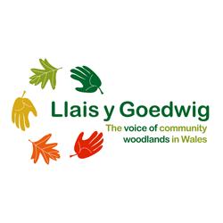 Llais y Goedwig (LlyG)