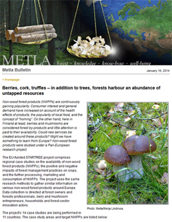 metla newsletter nwfp article 250